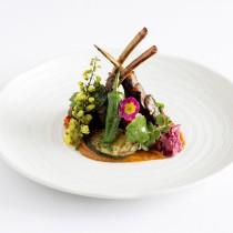 Spring lamb cutlets pickled Japanese rose