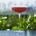 The Provencal cocktail at aqua nueva